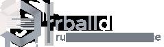 InnProjekt and Stats Perfom Partnership Rballdb